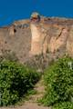 0-TL301 Canyons Ranch Drive - Photo 4