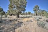 17938-Lot 501 Chaparral Drive - Photo 14