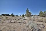 17938-Lot 501 Chaparral Drive - Photo 21