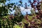 65885 Pronghorn Estates Drive - Photo 26