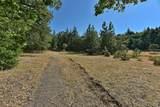 418 Steinman Drive - Photo 5