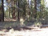 Green Forest Drive - Photo 10