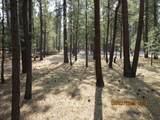 14715 Sugar Pine Way - Photo 11