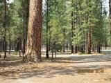 14715 Sugar Pine Way - Photo 12