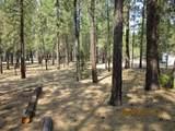 14715 Sugar Pine Way - Photo 9