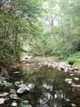 4610 Pleasant Creek Road - Photo 5