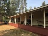 51636 Pine Loop Drive - Photo 6