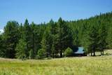 16981 Opal Mountain Ranch Road - Photo 10