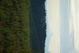 16981 Opal Mountain Ranch Road - Photo 22