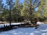 16981 Opal Mountain Ranch Road - Photo 8