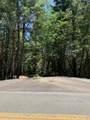 Limpy Creek Tl 203 Road - Photo 1