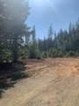 Limpy Creek Tl 203 Road - Photo 10