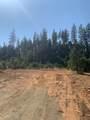 Limpy Creek Tl 203 Road - Photo 11