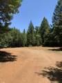 Limpy Creek Tl 203 Road - Photo 5