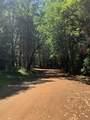 Limpy Creek Tl 203 Road - Photo 6