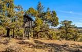 65815 Waldron Trail - Photo 42