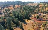 Pine Hollow - Photo 14