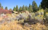 Pine Hollow - Photo 5