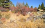 Pine Hollow - Photo 6