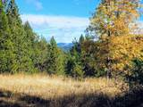999 Fork Trail Creek Road - Photo 1