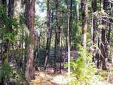 999 Fork Trail Creek Road - Photo 10