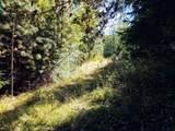 999 Fork Trail Creek Road - Photo 11