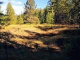 999 Fork Trail Creek Road - Photo 12