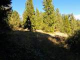 999 Fork Trail Creek Road - Photo 15