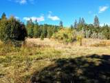 999 Fork Trail Creek Road - Photo 16