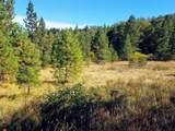999 Fork Trail Creek Road - Photo 2