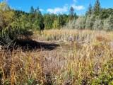 999 Fork Trail Creek Road - Photo 8