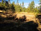 999 Fork Trail Creek Road - Photo 9