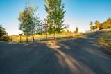 6405 Pioneer Road - Photo 27