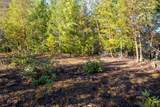 4699 Griffin Creek Road - Photo 2