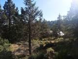 1135 Oregon Ash Circle - Photo 11