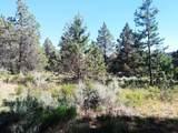 1135 Oregon Ash Circle - Photo 12