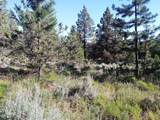 1135 Oregon Ash Circle - Photo 14