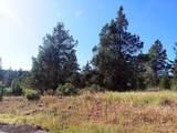 1135 Oregon Ash Circle - Photo 4