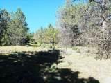1135 Oregon Ash Circle - Photo 6