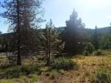 1135 Oregon Ash Circle - Photo 8