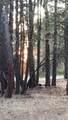 0 Marmot Ln Lot 16 - Photo 1