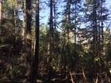 Hinkle Gulch/Thompson Creek Road - Photo 10