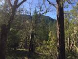 Hinkle Gulch/Thompson Creek Road - Photo 13