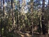 Hinkle Gulch/Thompson Creek Road - Photo 14
