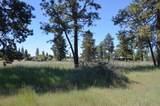 1700 Meadow View Drive - Photo 3
