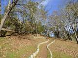 15551 Evans Creek Road - Photo 38