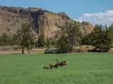 TBD Canyons Ranch Drive - Photo 14