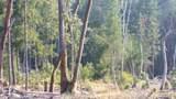 Coyote Creek Road - Photo 4