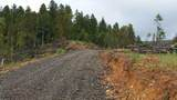 Coyote Creek Tl601 Road - Photo 3