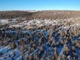 10201 Wolf Road - Photo 2